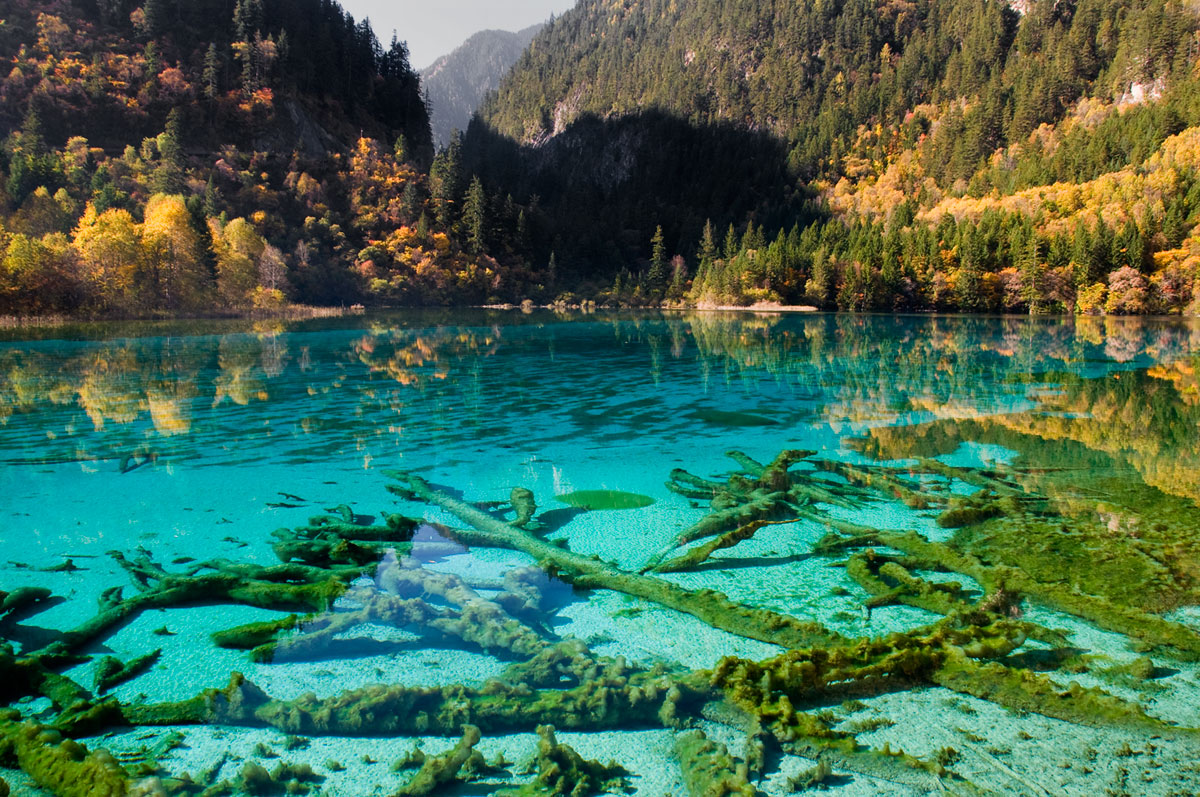 Clearest Water In The World Jiuzhaigou Np China Galleries Orthart Photography